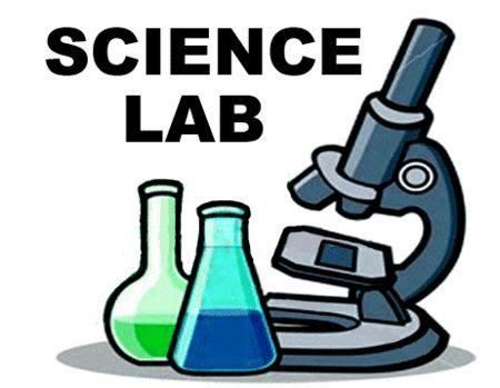 How to write an analytical chemistry lab reports
